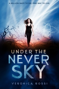 cover under the never sky