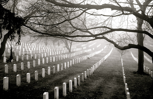 graveyard tree