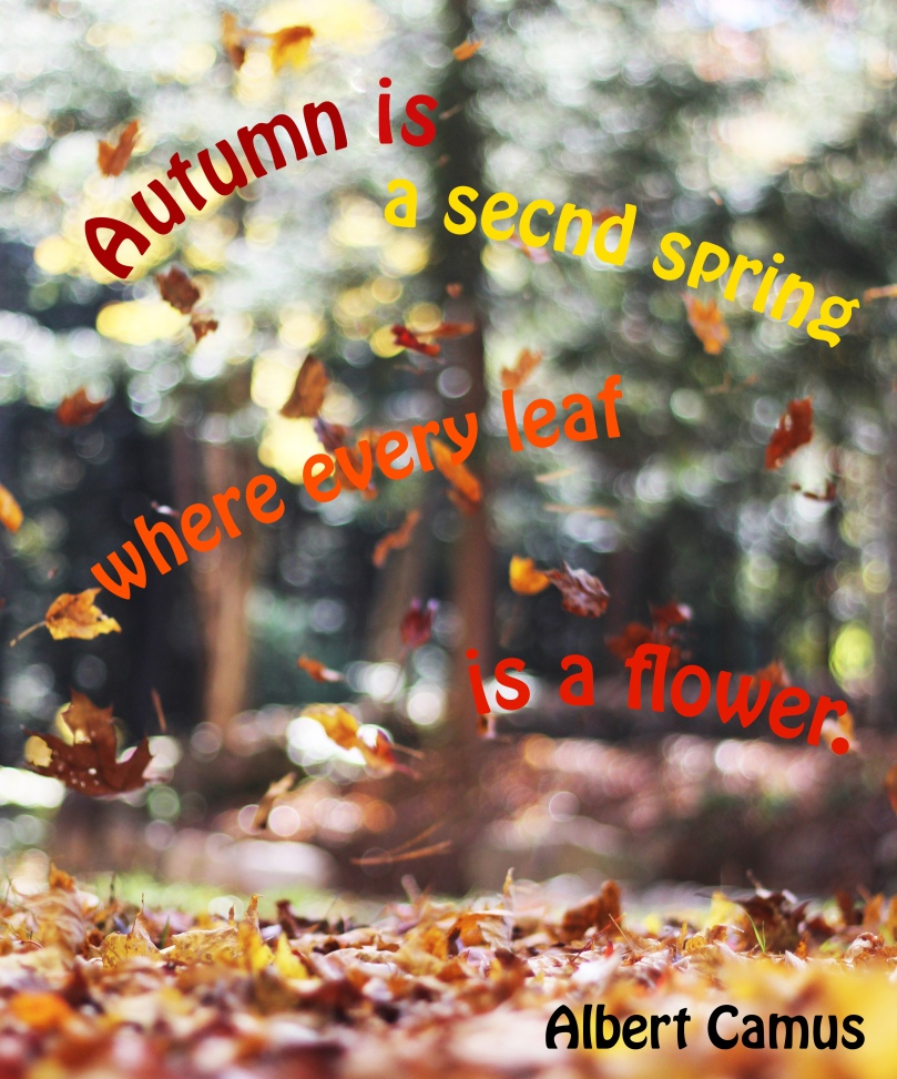 autum is a second spring
